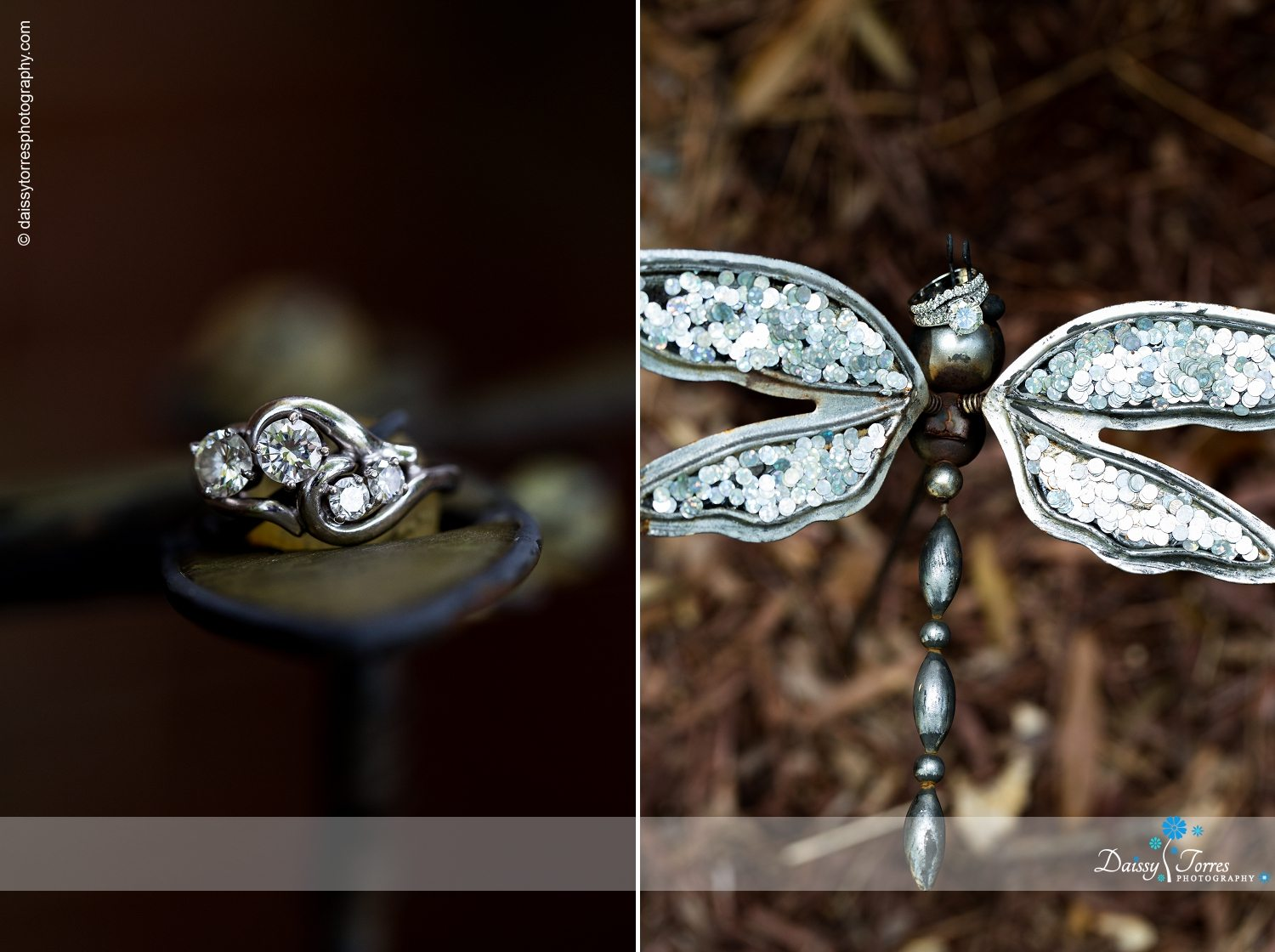 Meredith + Mike: An Outdoor Country Wedding In Chesapeake, Virginia