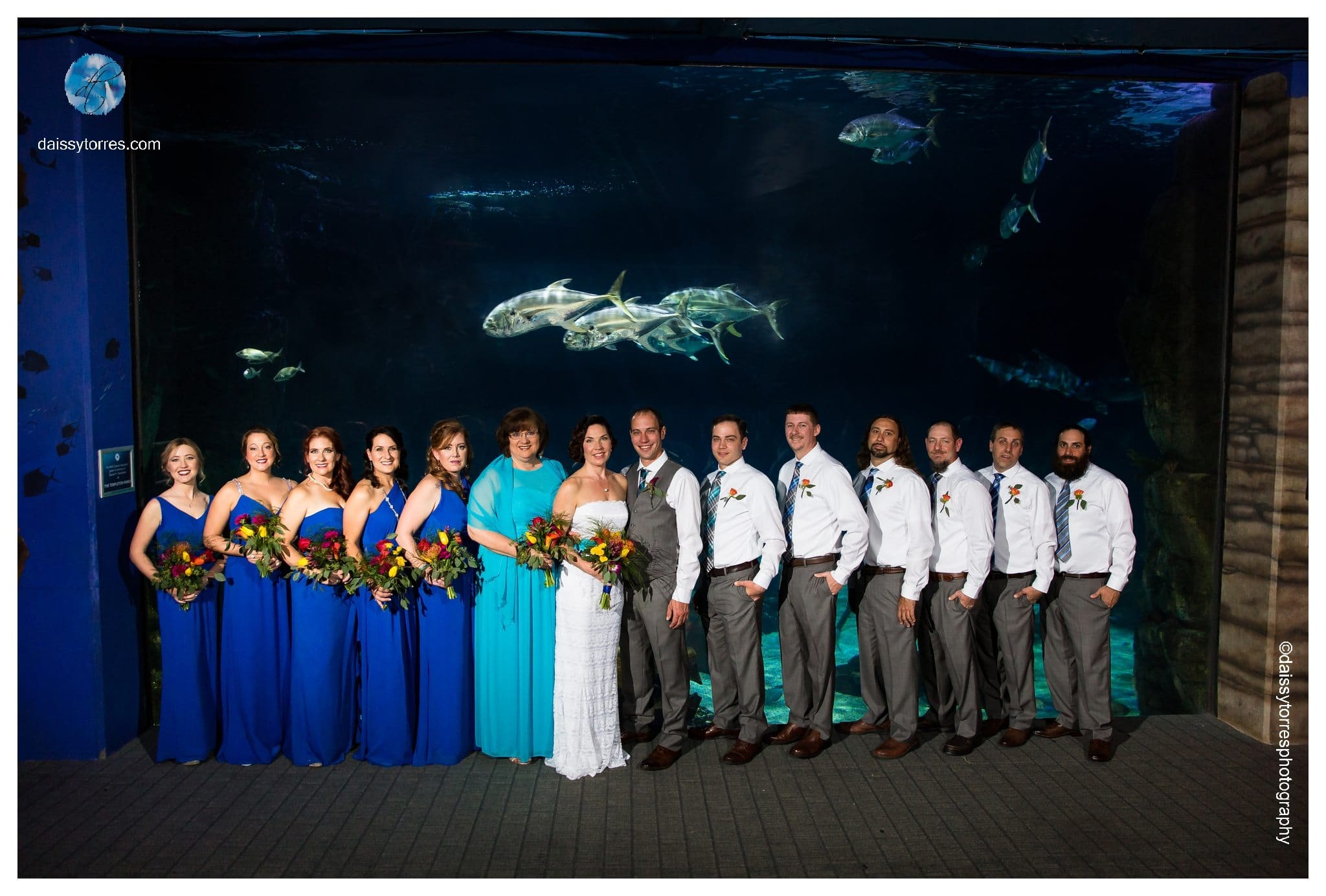 Virginia Aquarium Wedding - Shark Tank bridal party