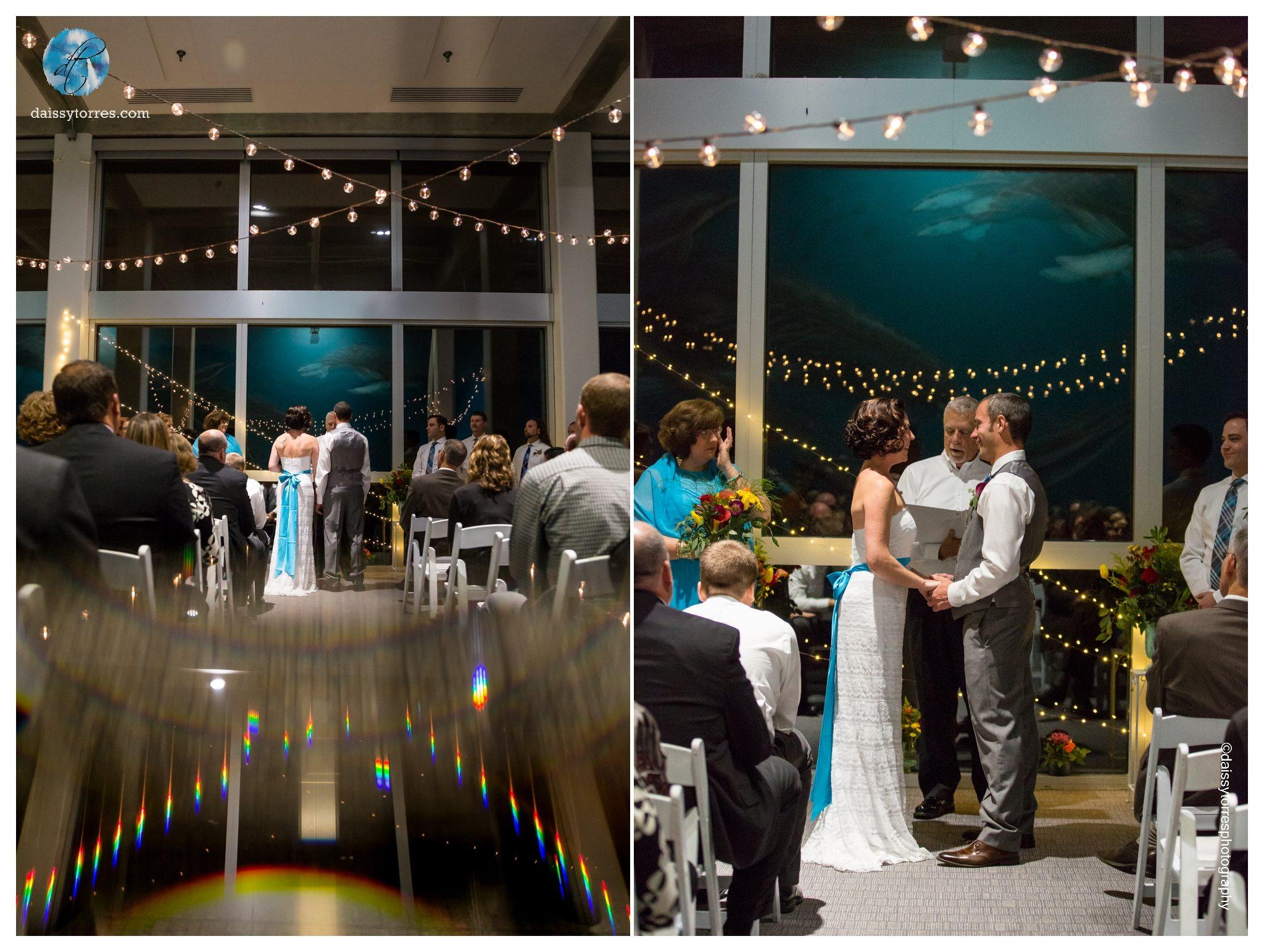 Virginia Aquarium Wedding Ceremony